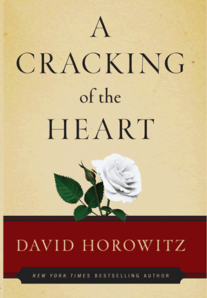 http://newsrealblog.files.wordpress.com/2009/10/cracking_horowitz_lg.jpg