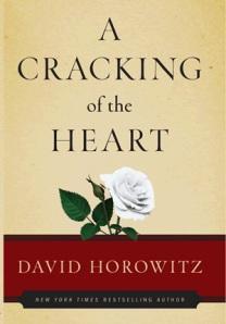 cracking_horowitz_lg