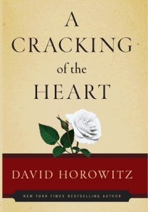 cracking_horowitz_lg