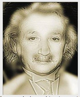 Einstein Opt Illusion.2
